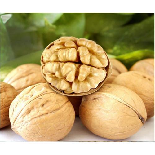 Грецкий орех в скорлупе Китай мешок 10 кг