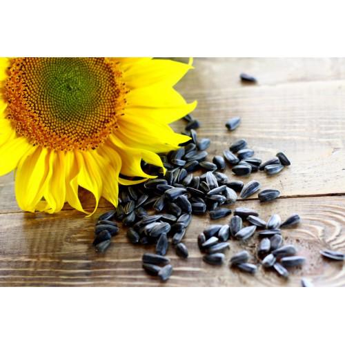 Семечки подсолнуха неочищенные черные 500 гр