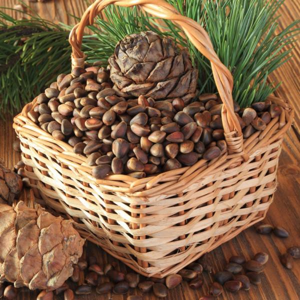 Кедровый орех в скорлупе от 1 тоны