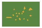 Интернет-магазин Золотой Орех